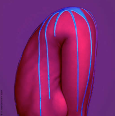 Howard Schatz 3