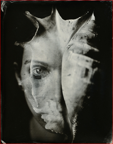 isa marcelli 2