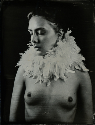 isa marcelli1
