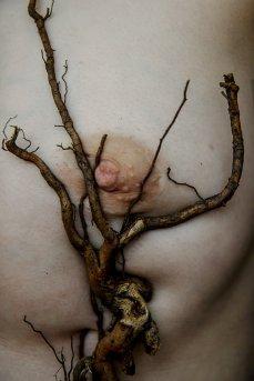 Elena-Helfrecht-Roots,medium_large.1491771259
