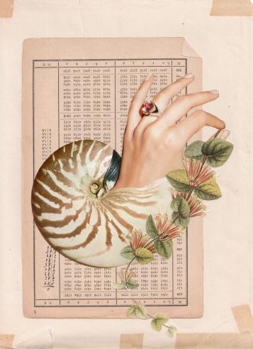 Sabine Remy on The Passenger Times Naturkonstante-1