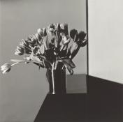 Tulips, 1978, Robert Mapplethorpe © Robert Mapplethorpe Foundation